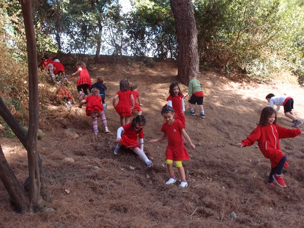 βόλτα στο δάσος