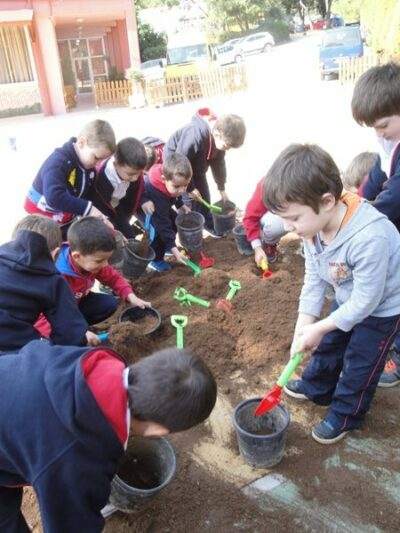 φυτεύουμε στο σχολείο μας