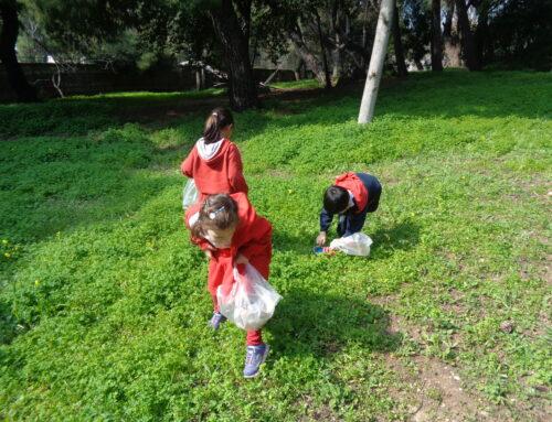 Φροντίζουμε το δάσος του σχολείου μας!