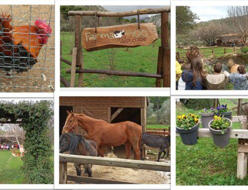 «Παίζω, χαίρομαι, μαθαίνω…με τα ζώα της φάρμας!» – Α΄ Δημοτικού Ηρακλείου