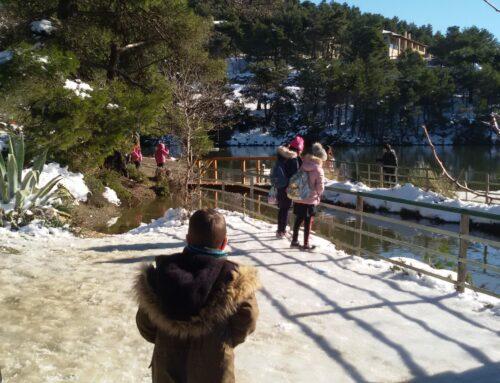 Εκδρομή της Δ΄ τάξης στα χιόνια!!! – Δ' Δημοτικού Ηρακλείου