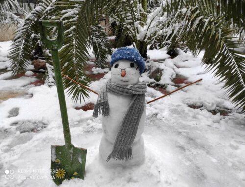 Διαγωνισμός Φωτογραφίας – Δημιουργία Χιονανθρώπου στις χιονισμένες γειτονιές της Αθήνας-Γυμνάσιο Ηρακλείου