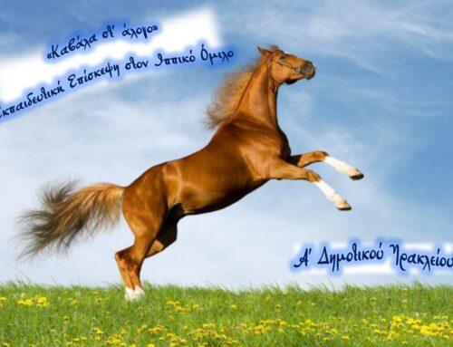 «Καβάλα στ΄ άλογο» – Εκπαιδευτική επίσκεψη στον Ιππικό όμιλο – Α΄ Δημοτικού Ηρακλείου